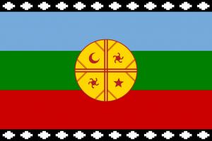 CSA y CSI condenan la violencia contra el pueblo Mapuche