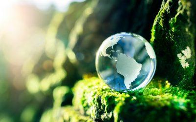 Día Mundial del Ambiente: La CSA participó del Congreso Internacional de Educación Ambiental organizado por CTERA